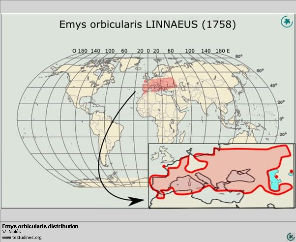 Emys orbicularis:  Range distribution